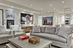 Residential architectural interior- living room - Connie Braemer Design